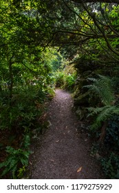 Blarney, Republic of Ireland - August 16th 2018: The beautiful gardens of the historic Blarney Castle in Blarney, Republic of Ireland.