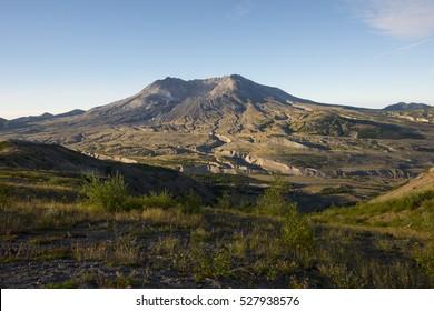 Blast zone coming back to life after 1980 eruption of Mount Saint Helens, Washington, USA.