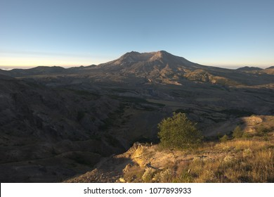 Blast zone of Mount Saint Helens, Washington, USA.