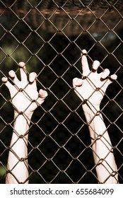 Bleached filtered image of Hands in desperate grip on mesh wired fence, symbolising captivity, hopeless, kidnapping, struggle and stressed person.