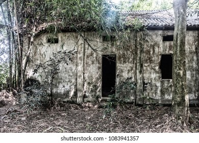 A bleached process filtered view of an abandoned and derelict village school building with weathered walls and tin roof standing amid overgrown rainforest vegetation in an Asian village.