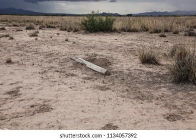 Bleached weathered broken wooden fence post on poor soil in desert landscape