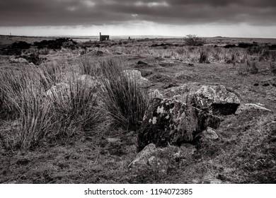 Bleak Day, Bodmin Moor, Cornwall