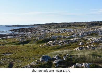 Bleak geological northern landscape