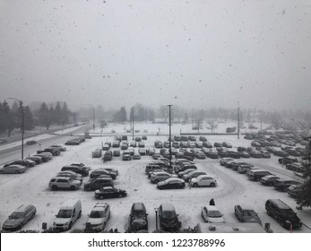 Bleak view of shopping mall parking lot on a snowy day
