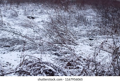 Bleak Winter Landscape