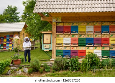 Bled, Slovenia - May 20, 2017: Local beekeeper Blaz Ambrozic with colorful traditionally painted apiary beehive houses at Kralov Med in Selo near Bled Slovenia in Spring