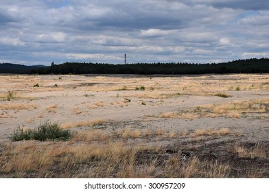 Bledow Desert, an area of sands in Poland. The Bledowska Sands is Central Europe's largest accumulation of loose sand in an area away from any sea.