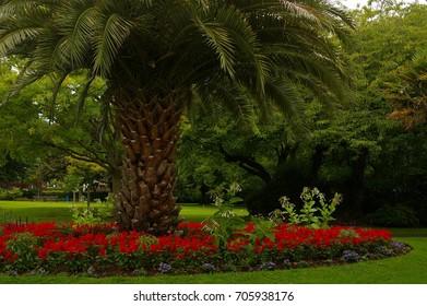Blenheim Gardens, Minehead, Somerset