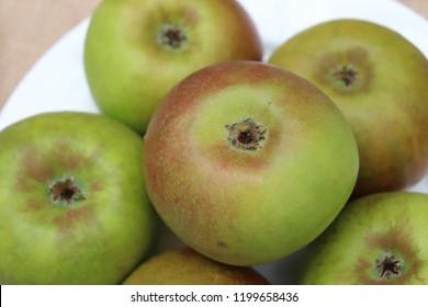 Blenheim Orange Apples