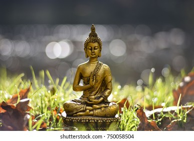 Blessing Buddha in nature