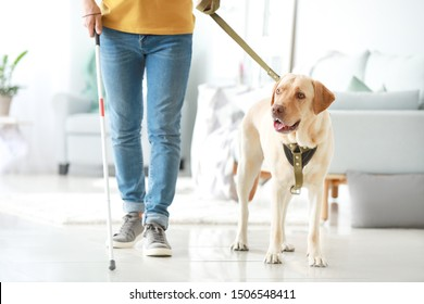 Blind young man with guide dog at home
