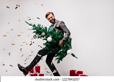 Blissful dark-haired man fooling around while preparing for new year. Laughing male model holding green christmas tree.