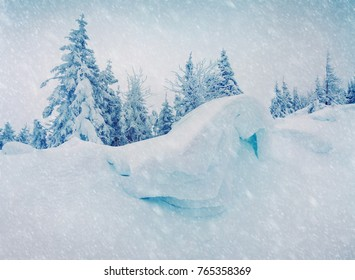 Blizzard in mountain forest with snow covered fir trees. Splendid outdoor scene, Happy New Year celebration concept. Beauty of nature concept background.