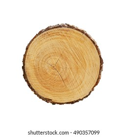 Block of cut wood from a tree isolated on white. Shows rings and texture from a fresh cut.