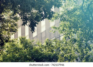 block of flats in green area, the plants filter out CO2 gas and produce oxygen.