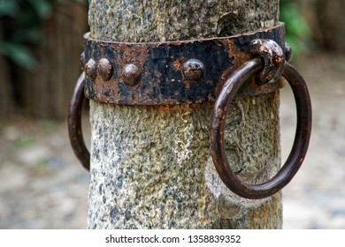 Blocker Tie Ring for horse, Ornate iron horse tie ring on the facade of medieval castle, Torino, Italy