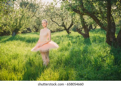Blond ballerina with perfect body in white tutu posing in the green landscape over the back sunlight. Romantic and tender feeling of young dancer girl in white tutu in floral garden at sunset