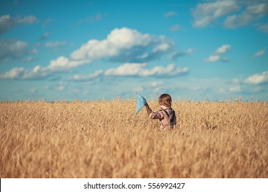 The blond boy with a butterfly net in a field of wheat. Children and nature.