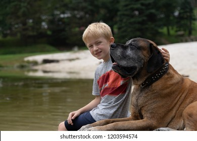 Blond boy and a large brown dog, sitting on a dock on a lake or a river. Sunny warm day.