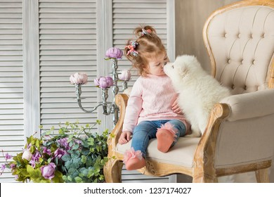 Blond girl posing with husky puppy white color in retro studio shoot with royal armchair. Cute young child play with puppy dogs in designed home decorations