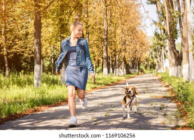 Blond girl walking with cute puppy on the sunshine autumn park alley
