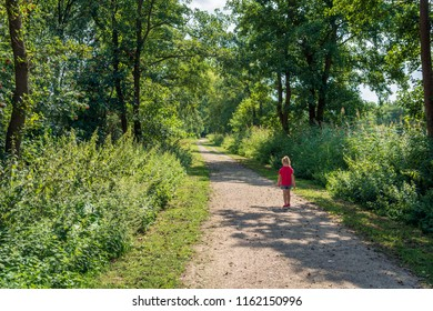 Blond little toddler girl walks alone on a quiet sandy road in a forest on a sunny day in the summer season.