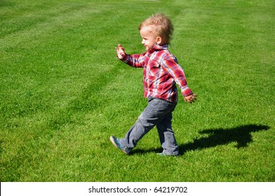 Blond toddler boy  walking in the grass