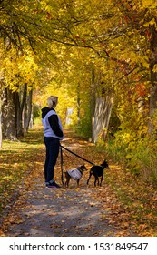 Blond woman walking her dog in a trail at fall