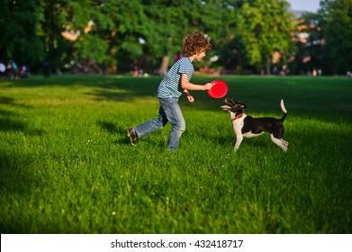 Blonde Junge spielt mit seinem schwarz-weißen Hund auf dem Rasen im Park. Junge hält einen Hauch. Sein Haustier schaut den Besitzer aufmerksam an. Der Hund hat einen Schwanz aufgezogen. Sie mag Spiel.