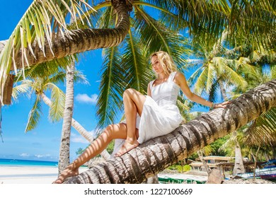 Blonde bride on the coconutpalm. Wedding and honeymoon on a tropical island. Summer vacation concept.