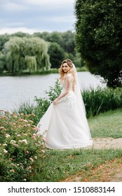 Blonde bride walks through the park with green grass and willows. Wedding portrait of a beautiful bride with a long dress. Wedding photography.