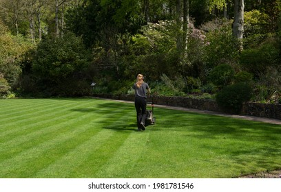 Blonde Female Gardener Mowing a Lawn with Diagonal Stripes on a Bright Sunny Day in a Garden in Rural Devon, England, UK