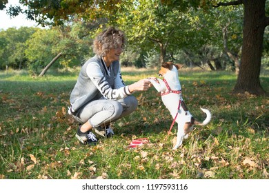 blonde female plays with her pet, jack russell dog in the green autumn park