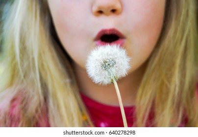 blonde girl with a dandelion