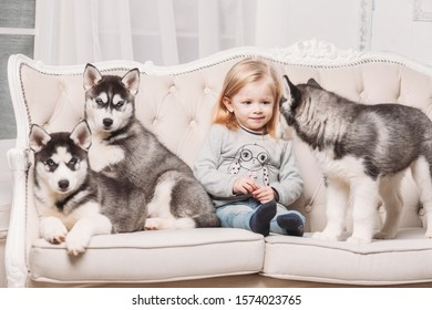 blonde girl with Husky puppies sitting on a beige couch