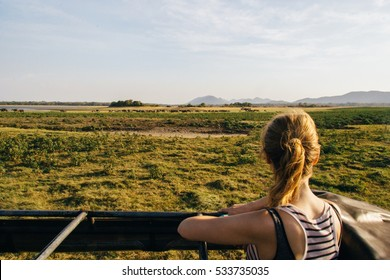 A blonde girl in a terrain car overlooking nature and wild animals in safari