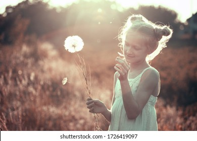 blonde Little girl holding dandelion and blowing it on the Sunset. summer holidays and mood