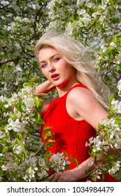 Blonde in a red dress among the flowering trees in the garden