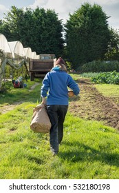 A blonde woman walks away from the camera carrying a large brown paper bag of organically grown produce. The rural setting includes green houses