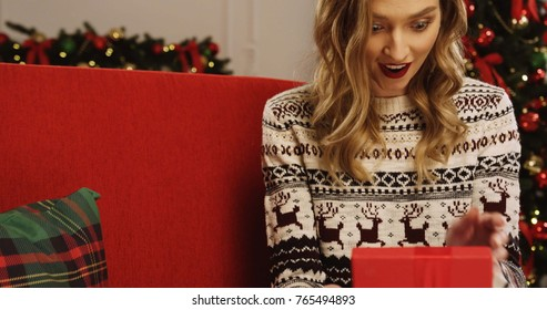 Blonde young woman opening Christmas present with red ribbon on it with surprised face while sitting on the red couch in the living room on the Christmas tree with light background. Indoor. Close up