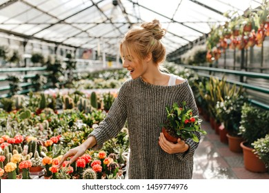 Blonde-haired girl with smile chooses cactus, holding beautiful plant in her hands
