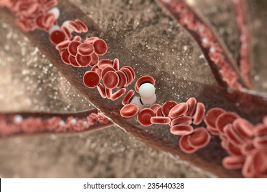 Blood cells in an artery