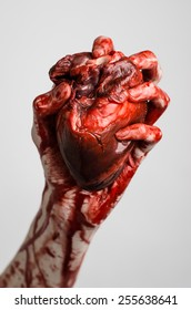 Blood and Halloween theme: terrible bloody hand hold torn bleeding human heart isolated on a gray background in studio