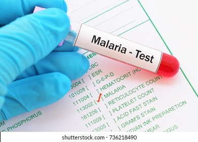 Blood sample with requisition form for malaria test