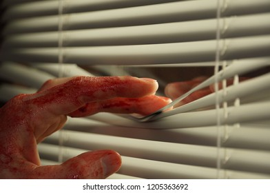 Bloody caucasian fingers opening window blind to look outside. Blood covered hand peeping through white window blind.