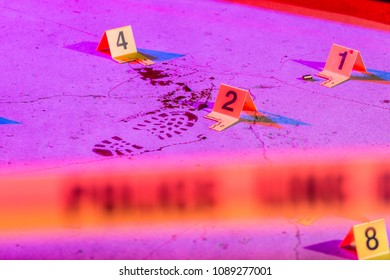 A bloody footprint is marked with an evidence marker within a crime scene.