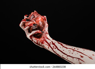 Bloody horror and Halloween theme: Terrible bloody hands with black nails holding a bloody human heart on a black background isolated background in studio
