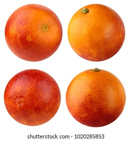 Bloody red orange, isolated on a white background. Collection, set of whole fruits. Citrus.