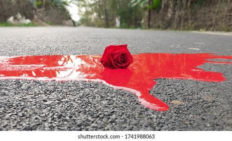 Bloody Rose Flower On Rosd